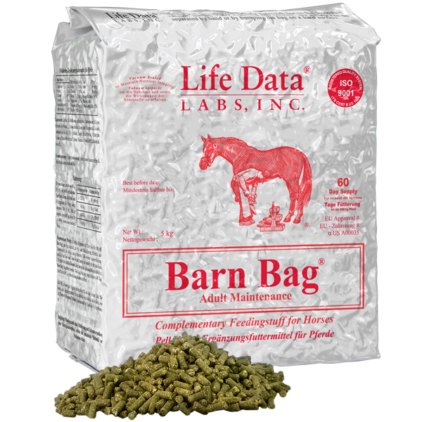 Barn Bag Hay and Pasture Balancer
